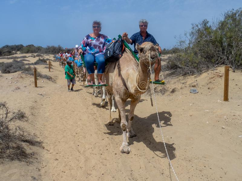 Tourists on camels at Camel Safari Park, Gran Canaria. Gran Canaria/Spain - August 16 2019: Camel Safari Park is a safari adventure park located in the nature royalty free stock photography