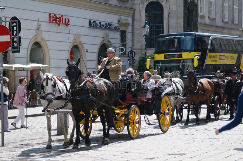 Tourists in carriage visiting Vienna