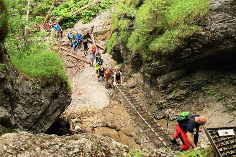 Tourists climbing iron ladders in Slovak Paradise stock photography