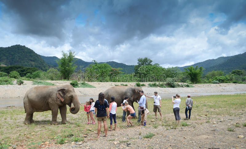 Tourists with elephant royalty free stock photography