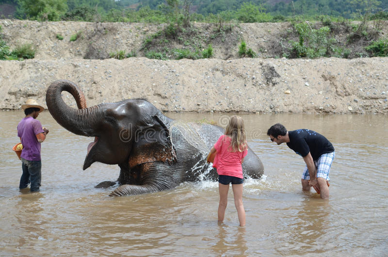 Tourists with elephant stock photography