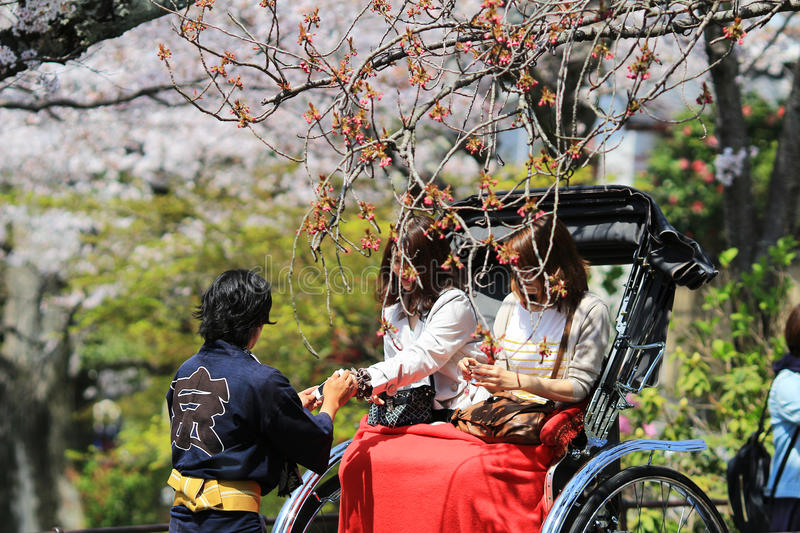 Tourists enjoy cherry blossom at Path of Philosophy in Kyoto. It is a pedestrian path that follows a cherry-tree-lined canal in Kyoto stock photography