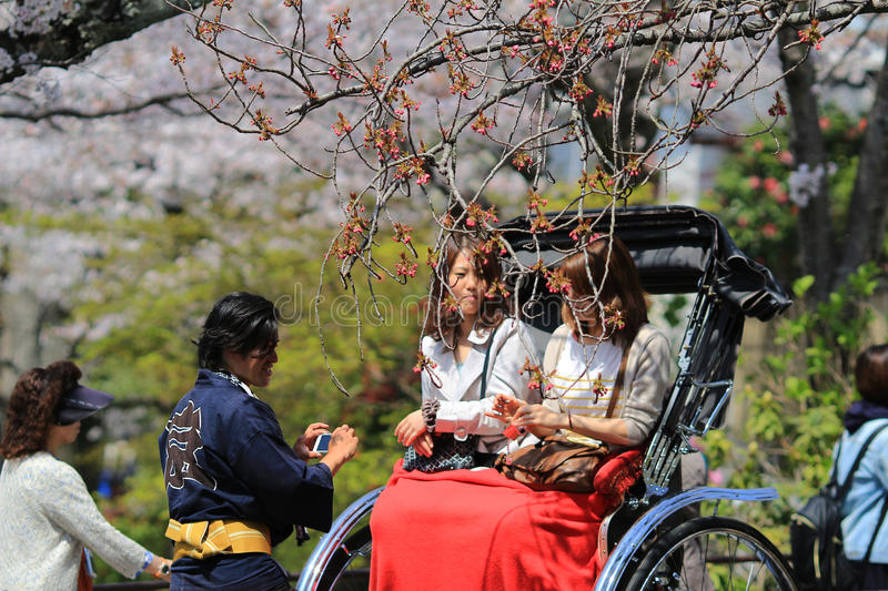 Tourists enjoy cherry blossom at Path of Philosophy in Kyoto. It is a pedestrian path that follows a cherry-tree-lined canal in Kyoto royalty free stock photography