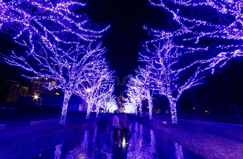 Tourists enjoying the beautiful scenery of Winter Illumination Display for Christmas & New Year, royalty free stock photography