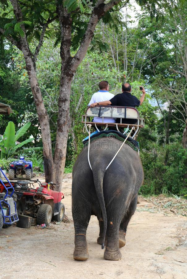 Tourists enjoying elephant ride stock image