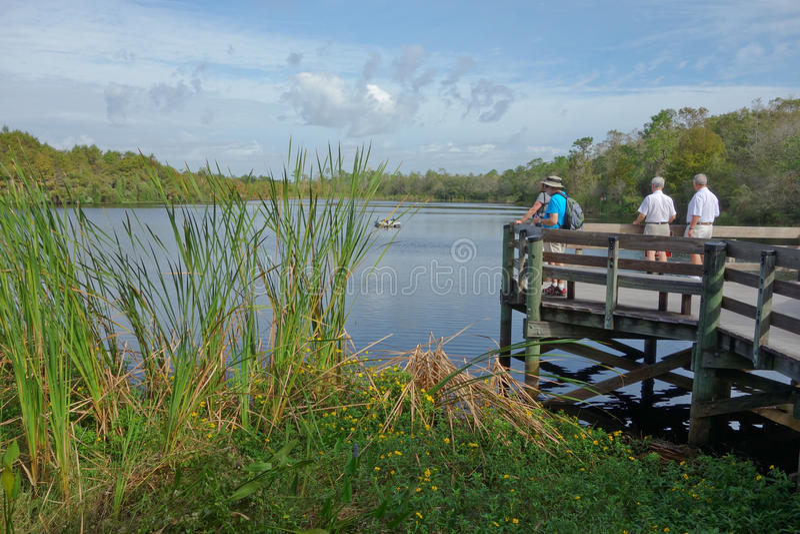 Tourists enjoying view of small lake on viewing platform in Florida. stock photo