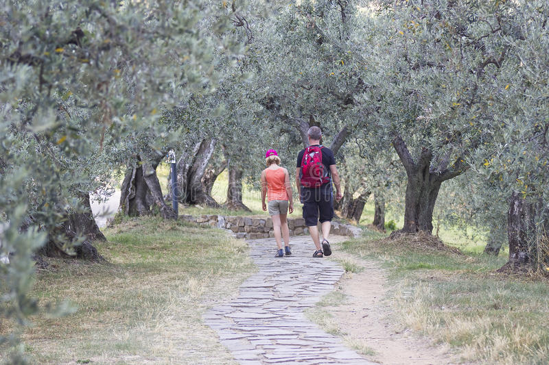 Tourists in the Garden of Olives royalty free stock photography
