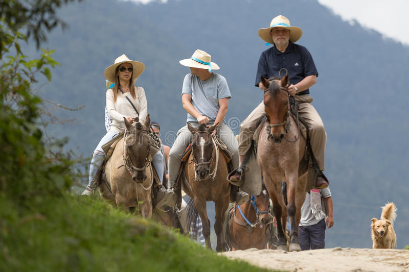 Tourists on horseback in Salento Colombia. February 20, 2017 Valle de Cocora, Colombia: guided sightseeing tours in the jungle on horseback are very popular with royalty free stock images
