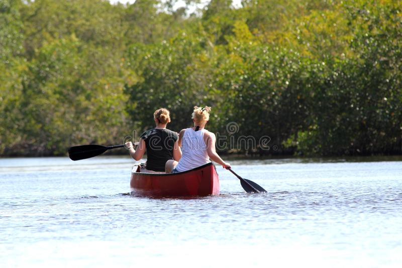 Panoramic Tourists kayaking in mangrove forest in Everglades National park - Floridaa of lake in Everglades National park. Tourists kayaking in mangrove forest royalty free stock images