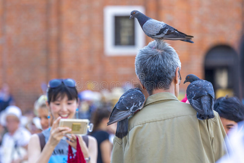 Tourists Play with Pigeons royalty free stock images