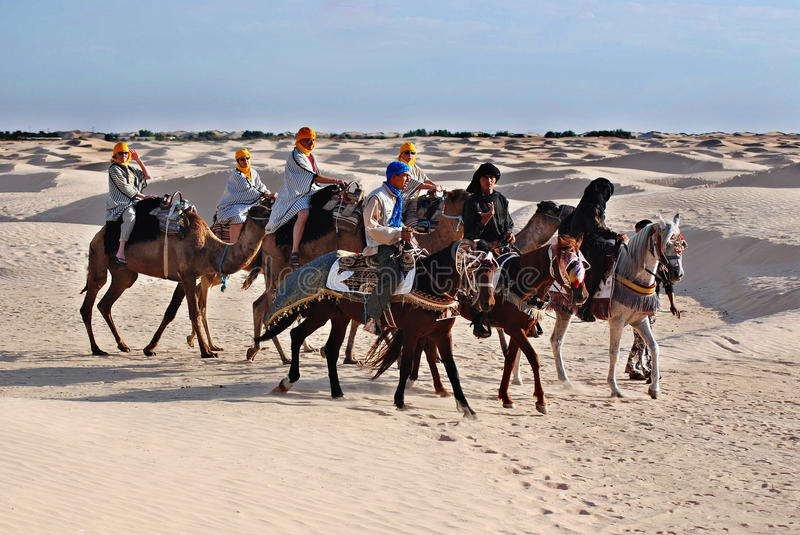 Tourists ride on camels stock image