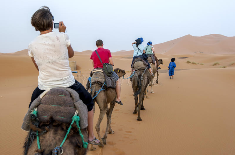 Tourists ride camels into Erg Chebbi at Merzouga in Morocco. royalty free stock photos