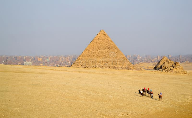 Tourists ride on camels to the pyramids stock photos