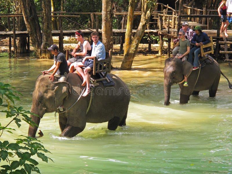 Tourists riding elephants stock photography