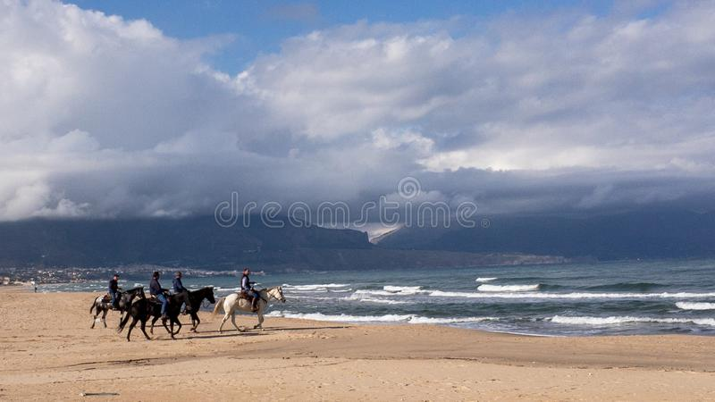 Tourists ridings horses on an Italian beach royalty free stock photos