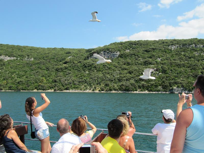 Tourists sailing on the ferry to feed seagulls and take pictures. Croatia, Istra - July 20, 2010. stock image