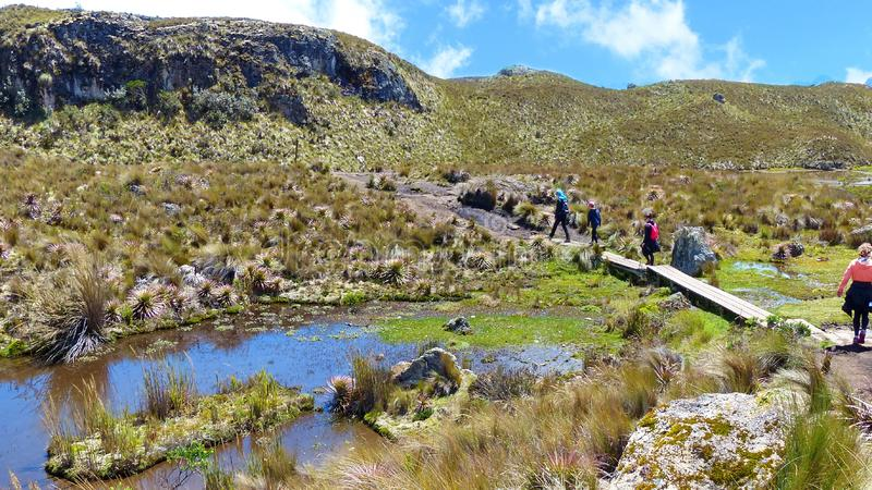 Tourists on the trail through valley of Toreadora lake.  Cajas National park, Ecuador royalty free stock images