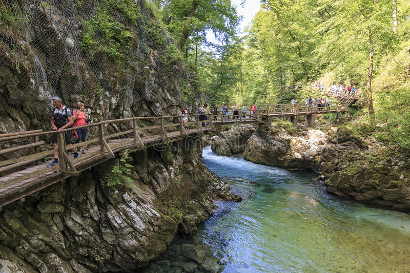 Tourists walking inside the Vintgar Gorge on a wooden path between Bled Lake and Bohinj Lake in Slovenia, Europe. royalty free stock image