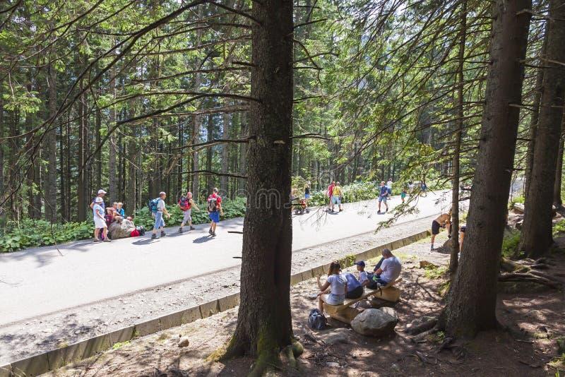 Tourists walking on road to Morskie Oko lake in High Tatra Mount royalty free stock image