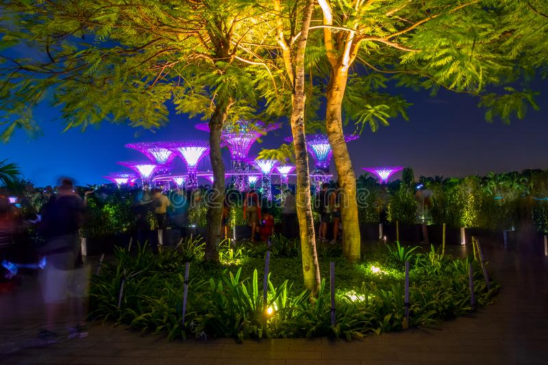 Tourists Watch a Light and Music Show. Evening in Singapore. Super flowers. Tourists watch a light and music show stock photo