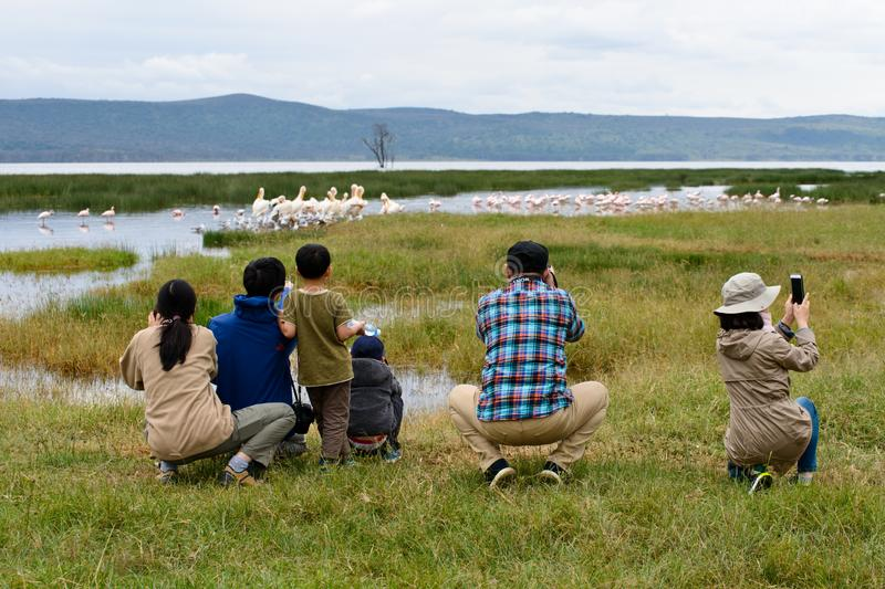 Tourists watching birds in a safari stock images