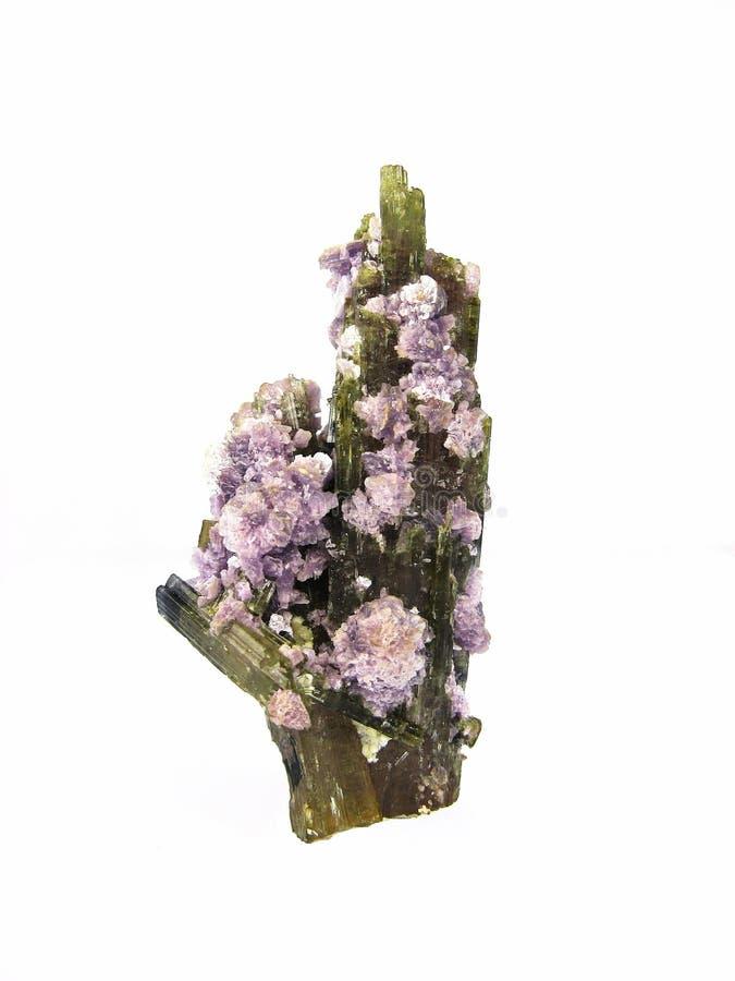 tourmaline lepidolite стоковые изображения rf