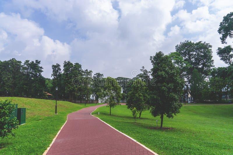 Tournant de chemin de marche en parc public photo stock