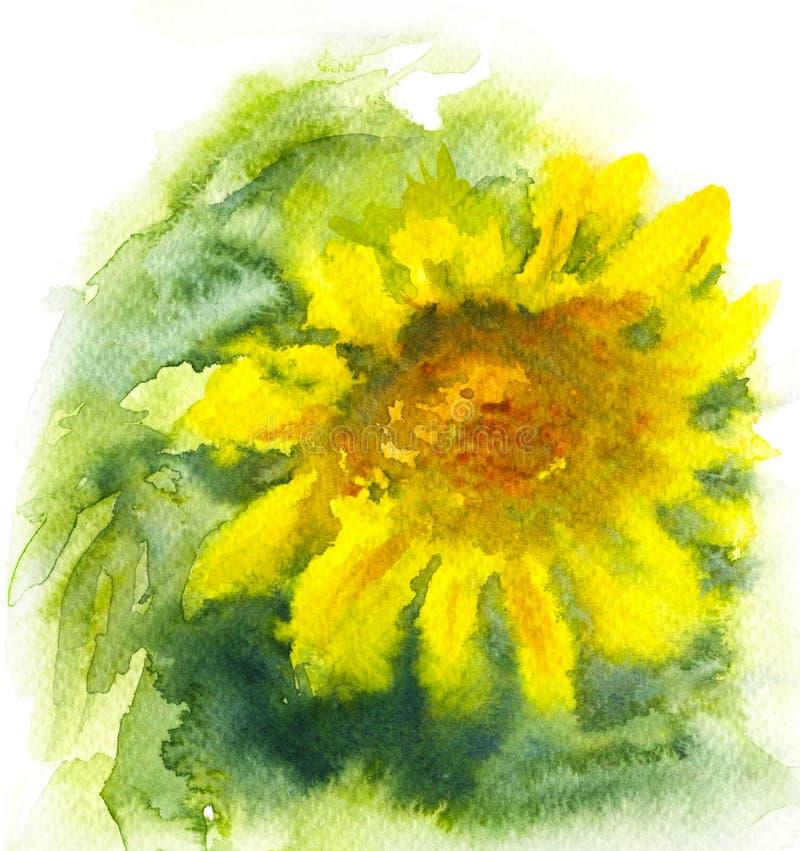 Tournesol d'aquarelle avec les pétales jaunes illustration libre de droits