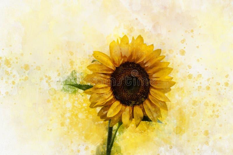 Tournesol dans le style d'aquarelle, illustration florale pour l'album ou cartes de voeux illustration libre de droits