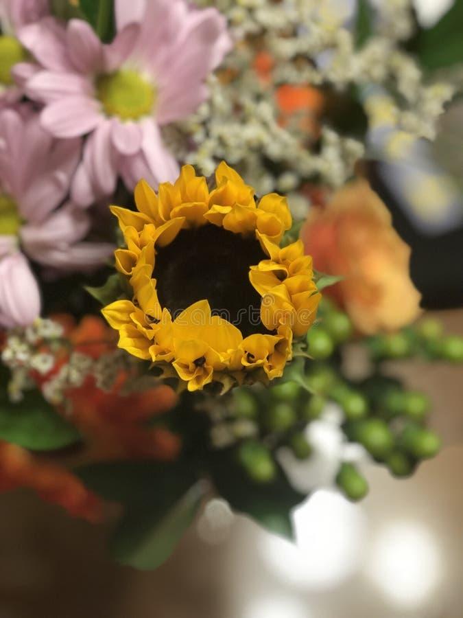 Tournesol dans un bouquet photographie stock
