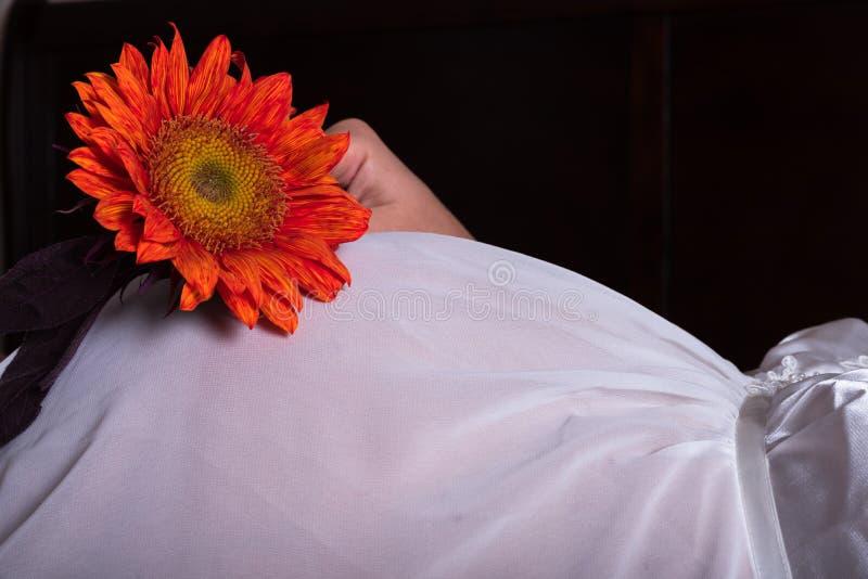 Tournesol orange lumineux sur le ventre enceinte de maman photographie stock