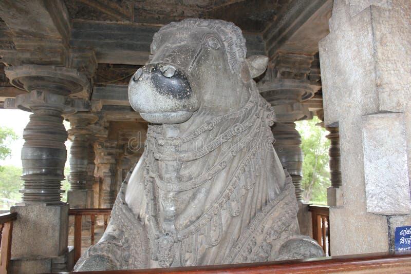 Touro grande monolítico o maior de Nandi do templo de Hoysaleswara 6o na Índia foto de stock royalty free