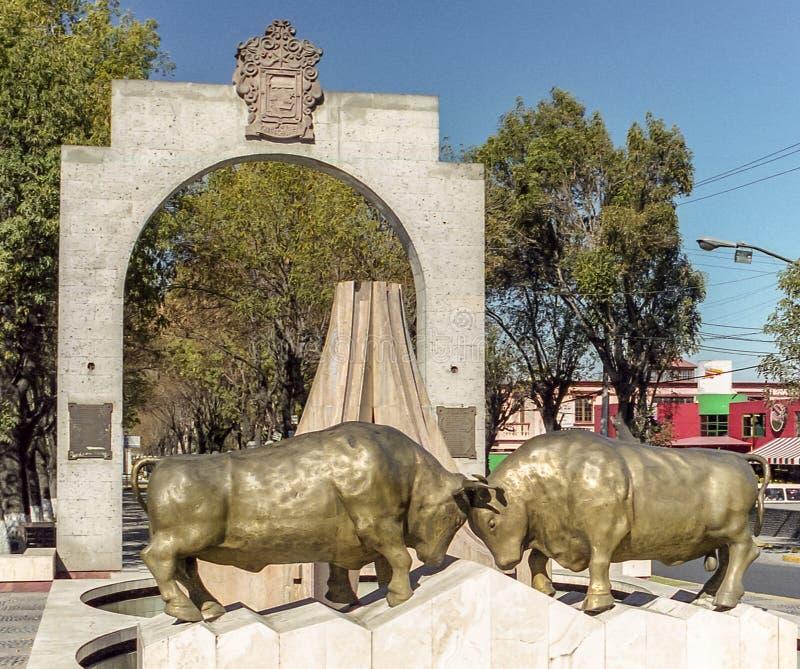 Touros de combate em Arequipa no Peru fotos de stock