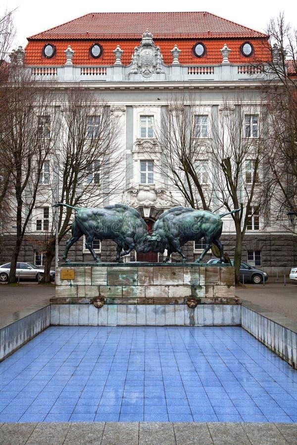 Touros de combate - uma escultura de duas grandes figuras do bisonte trabalha pelo escultor alemão August Gaula foto de stock