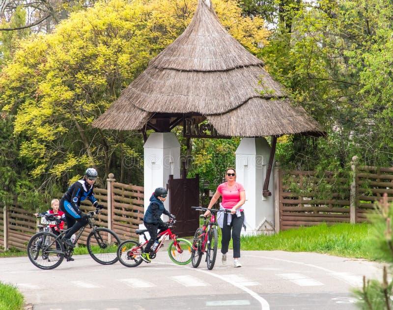 Tours de famille en parc sur des bicyclettes photo libre de droits