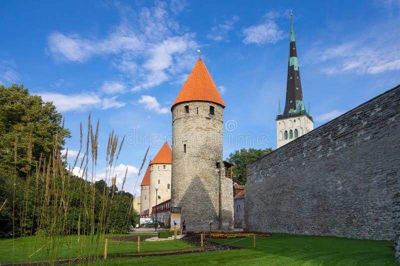 Tours de vieux Tallinn photographie stock libre de droits