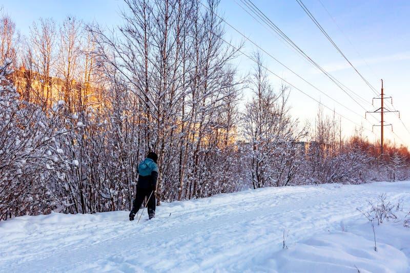 Tours masculins de skieur en parc d'hiver au coucher du soleil image libre de droits