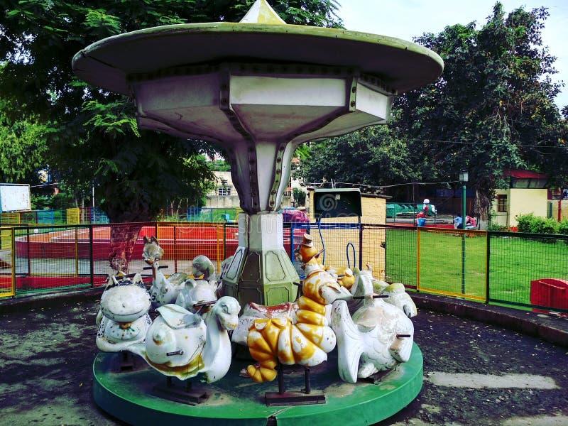 Tours mignons en parc photographie stock libre de droits