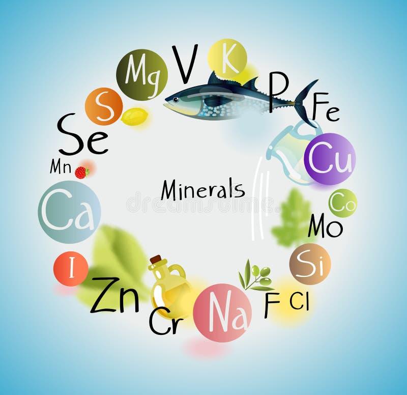 Tous les minerais pour des prestations-maladie Liste de minerais et de nourriture illustration de vecteur