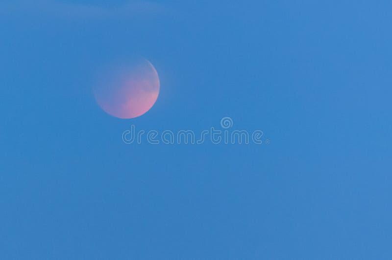 Toute l'éclipse de la lune, la lune ensanglantée la nuit image libre de droits