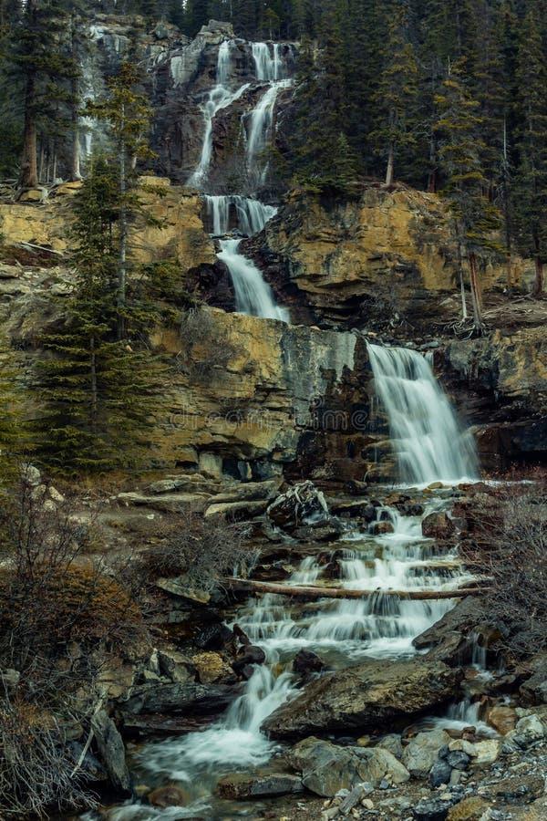 Tovaliten viknedgångar, Jasper National Park, Alberta, Kanada royaltyfri fotografi