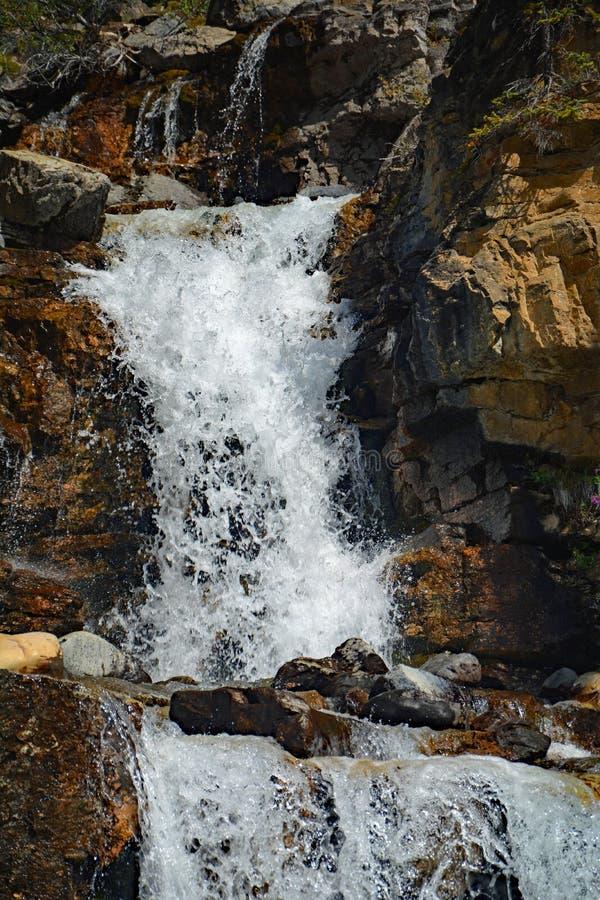 Tovaliten vikvattenfall i Jasper National Park, Alberta, Kanada royaltyfri foto
