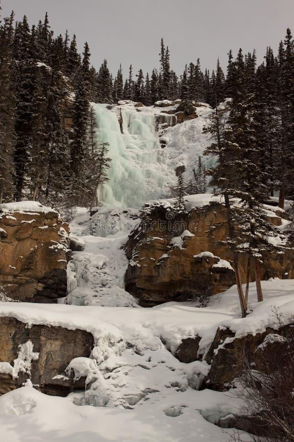 Tovanedgångar i vinter royaltyfria foton