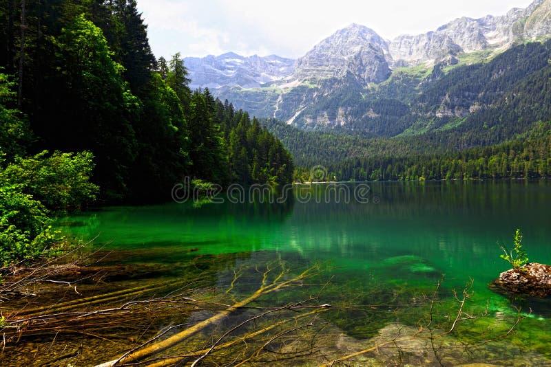Download Tovel lake on alps stock image. Image of desolate, tourism - 15159191