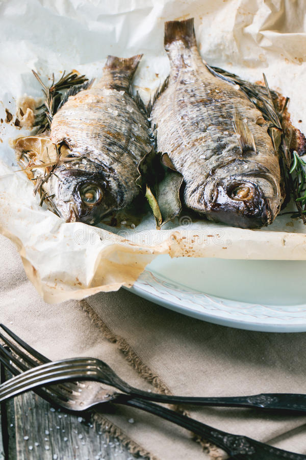 Tow grilled dorado fish royalty free stock photos