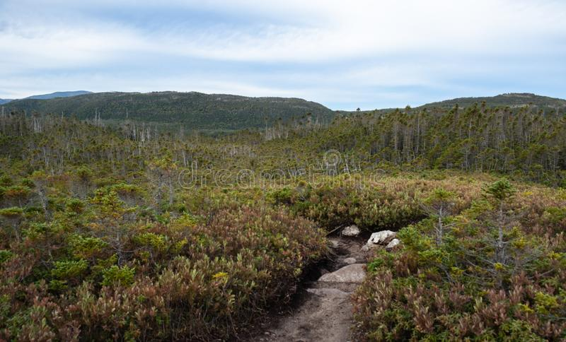 Toward Gros Morne Mountain. Gros Morne Mountain Trail in Gros Morne National Park in Newfoundland, Canada Late fall on a stormy windy day. Mountains and valleys royalty free stock photo