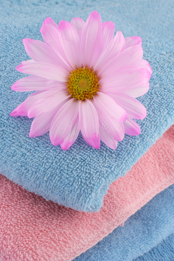 Download Towels and daisy stock image. Image of wash, scent, hygiene - 1948697
