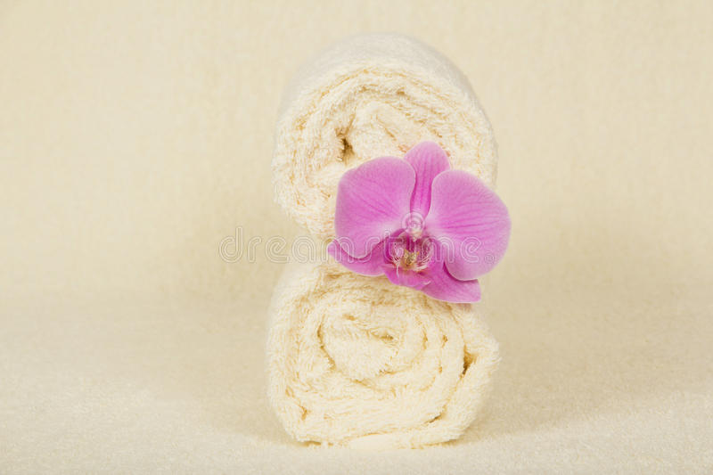 Download The Towels Roll Decorated Orchid Stock Image - Image of textile, clap: 41962065