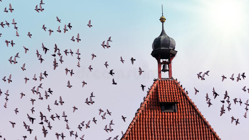 Tower With Birds Royalty Free Stock Photo