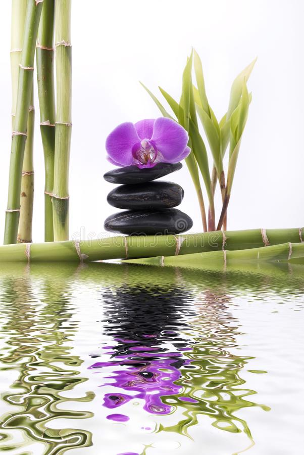 Bamboo with purple orchid and tower of black stones stock photo